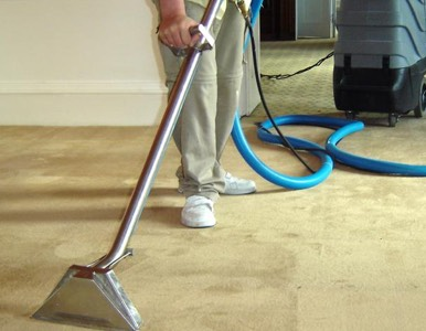 Carpet Cleaning In Fort Worth Upholstery Cleaning Rug